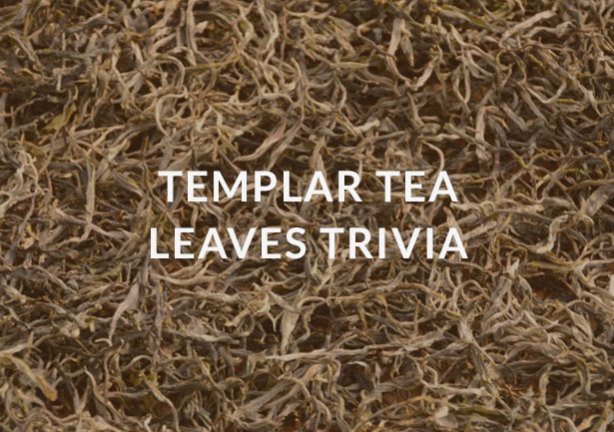 Templar tea leaves trivia